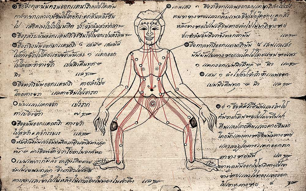 A guide to pressure points for use in 'Thai Yoga Massage'. Diagram: human figure showing pressure points. circa 1850 Published: -